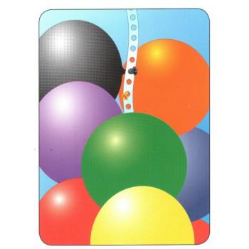 Balloon Vine 5 meter
