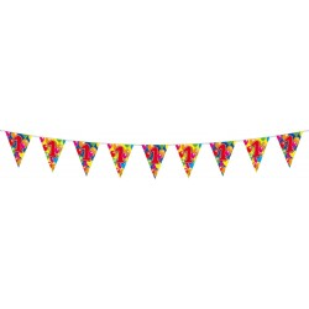 Vlaggenlijn balloons 1 jaar 10m