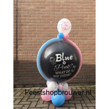 Geslachts ballon blue or pink